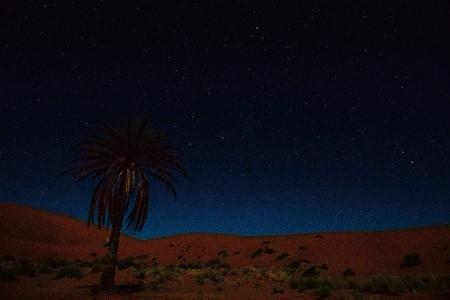 사하라 사막 이미지 1