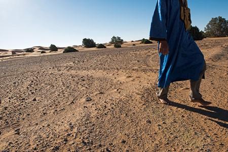 사하라 사막 이미지 6