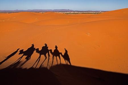 사하라 사막 이미지 4
