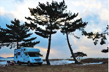 청포아일랜드 캠핑장 풍경. 바닷가 사이트부터 송림까지 약3,000평의 부지를 활용할 수 있다. <사진:이윤정 기자>